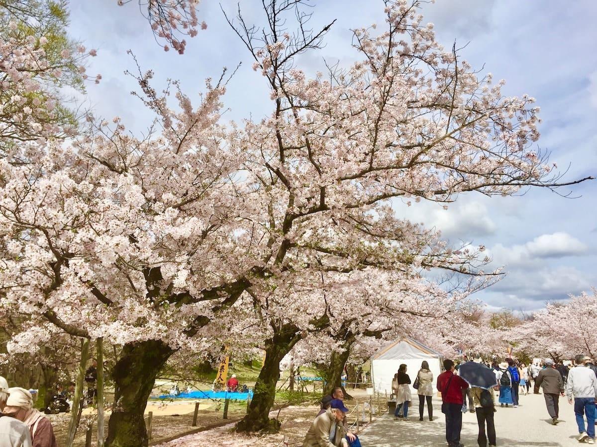 Parque del Castillo de Himeji