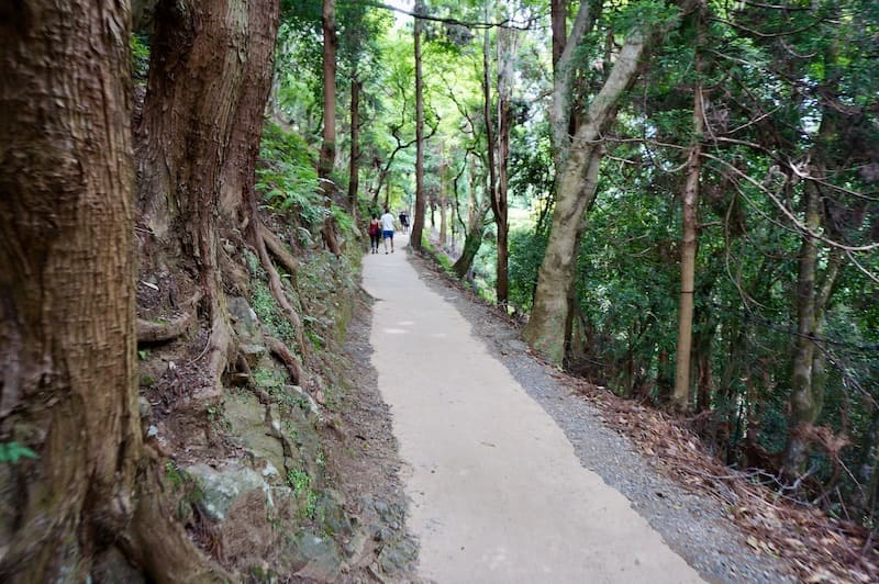 Camino del monte Iwatayama