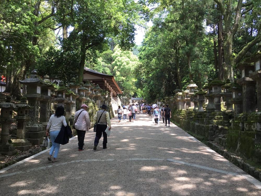 Camino al Santuario Kasuga Taisha de Nara