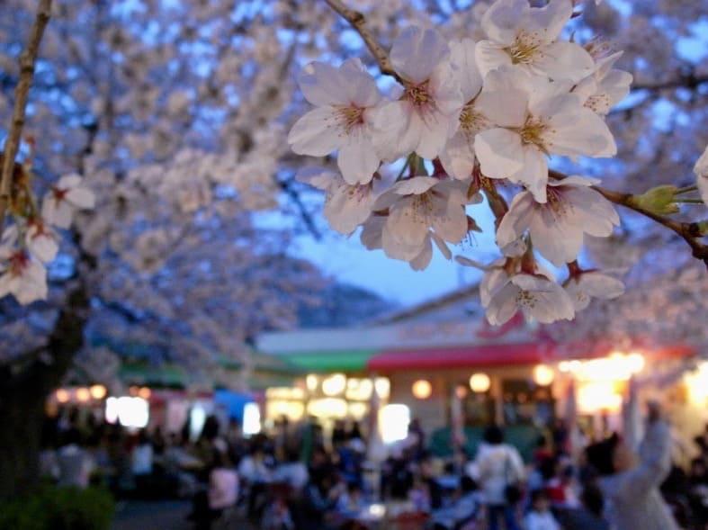 Parque Egeyama de Kobe
