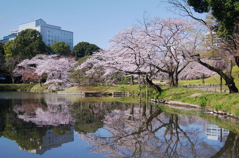 Jardín Koishikawa Korakuen