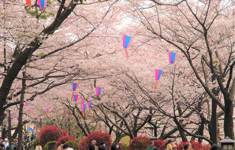 Parque Asukayama