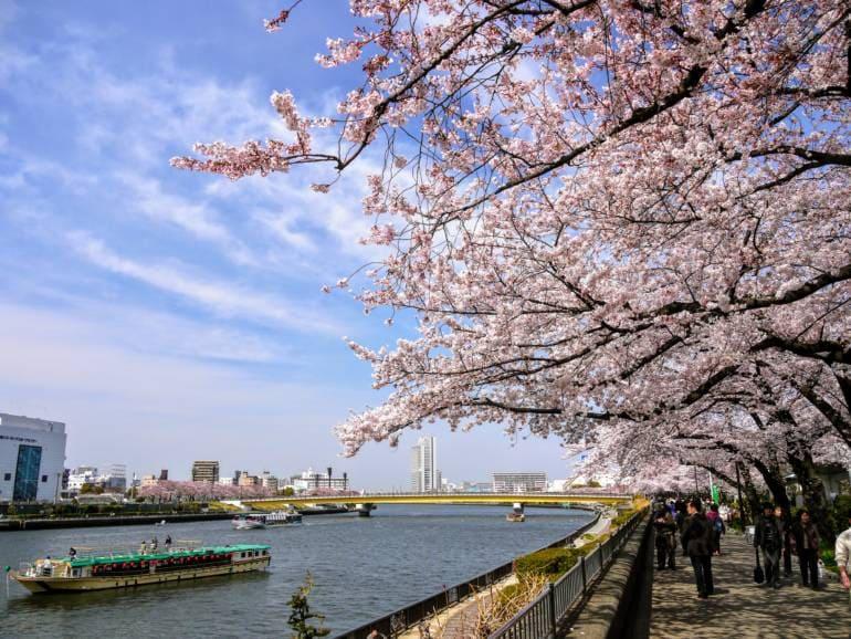 Parque Sumida